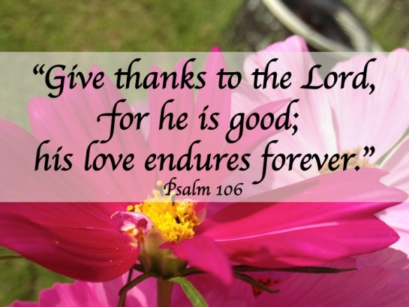 Finding words for gratitude in the Psalms