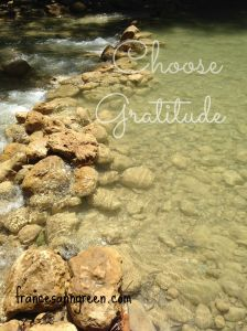 Choose gratitude - how to live in freedom from a grateful heart rather than in bondage from an indebted heart.