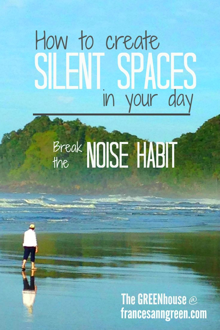 Our days are cluttered with constant noise. Take this challenge to break the noise habit and create more silence in your day.