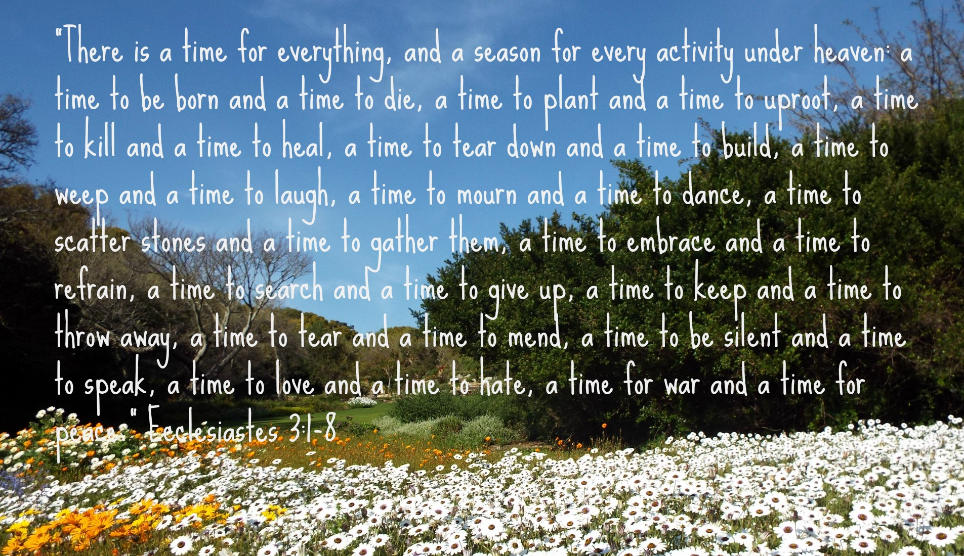 A time for everything - Ecclesiastes 3: 1-8